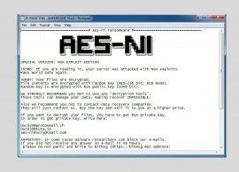 Создатель вымогательской программы AES-NI обнародовал мастер-ключ для своей разработки
