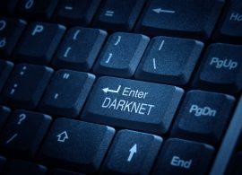 Выявлен поисковый сервис, который позволяет осуществлять мониторинг даркнет-сайтов