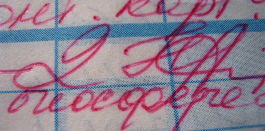 Школьник из Республики Коми осуществил взлом электронного дневника