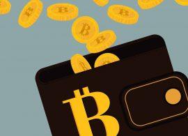 Троянская программа Quant может атаковать кошельки с криптовалютой