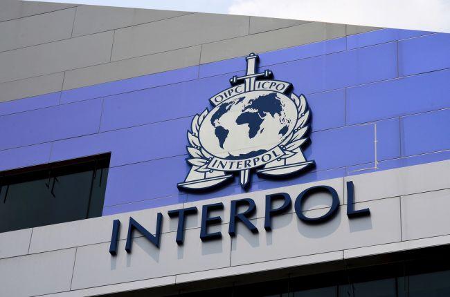 Интерпол закрыл 2500 веб страниц и изъял лекарств на $14 миллионов