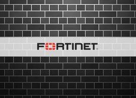 Хакерам попали в руки пароли для 500000 учетных записей Fortinet VPN